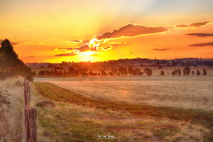Sunset 22.04.2017 #2 (Struan Timms Photography) Tags: nikon nikhdreffex nsw nikcollection nikond750 28105mm sunset autumn road fences juneephotographer junee juneeshire nswaustralia riverina countrynsw countryside paddocks struantimmsphotography clouds gorgeous ruralaustralia youmeandjunee