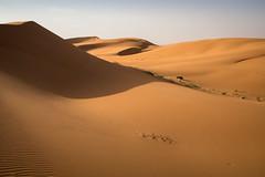 L'erg Chebbi (12) (mgirard011) Tags: randonnées ergchebbima maroc afrique lieux meknèstafilalet ma 100faves
