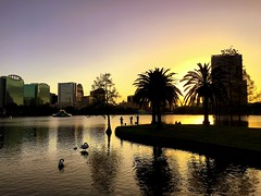 Evening walk in Orlando (PeterCH51) Tags: usa us florida orlando evening sunset lake water lakeeola iphone peterch51