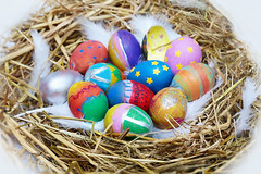 Have an Egg-Cellent Easter (Juavenita ♥) Tags: easter eggs coloured nest display hatched
