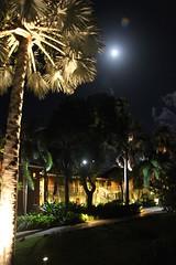 IMG_5481 (David Danzig) Tags: nevis carribean condo four seasons moonrise