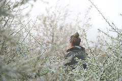 (CarolienCadoni..) Tags: sonyslta99 70200mmf28gssmii backshot blossom dof bokeh white nieuwbuinen drenthe dreamy nederland netherlands april