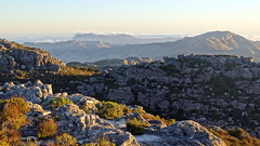 Southern Cape Landscape