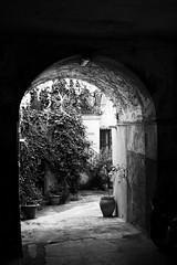 Tunnel ⚫️⚪️ (alessandrociacci1) Tags: vicoli catanzaro street streetphotography blackwhite