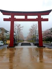 gate (hamapenguin) Tags: japan kanagawa kamakura shrinegate shrine spring sakura flower 桜 サクラ 鳥居 鎌倉 apple iphone