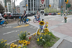 West Street Memorial (Terese Loeb) Tags: weststreet chambersstreet tribeca bicycle bicycles bicyclists memorial accident manhattan newyorkcity newyork lowermanhattan downtownmanhattan flowers flower springtime spring grief