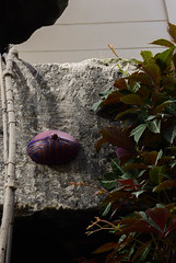 Intra Larue 917 (intra.larue) Tags: intra urbain urban art moulage sein pecho moulding breast seno brust formen téton street arte urbano pit paris france boob urbana peto tetta montmartre