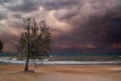 Before the rain (Karol ...) Tags: stormyweather clouds elements whirlwinds storm