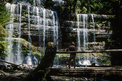 Russell Falls, 1953 (NettyA) Tags: 1950s australia billtomsett russellfalls tasmania tassie mtfieldnationalpark tas waterfall 1953