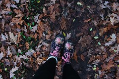 // Dr Martens // (emilyrayner-airey) Tags: drmartens bouncing souls boots leaves