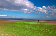 The Green Green Sand of Home [Explore #58] (Eiona R.) Tags: swansea wales unitedkingdom gb swanseabay rainbowrun tyhafan charity wfc explore
