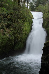 Bridal Veil (alison_m10) Tags: oregon ocean oregoncoast pacificnorthwest pacific pacificocean northwest travelling travel landscape phonegraphy nature neature waterscape water beach photography landscapephotography green greenery waterfall wate river falling fall white rapids rocks rock rocky plant plants trees tree moss mosses cascading cascade blue or columbiagorge columbia gorge columbiarivergorge bridal veil falls bridalveilfalls cascadia westcoast west upperleftusa landsacpe