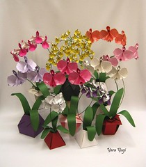 And that's enough! (Yara Yagi) Tags: origami paper papel flor flower orquídea orchid