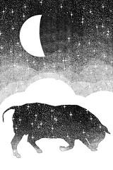 Taurus (RadioSignals) Tags: taurus zodiac horoscope astrology stars moon illustration