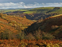 Combetastic Exmoor (Dazzygidds) Tags: autumn colours perspective diversity somerset textures framing depth sunlightandshadow exmoor westsomerset exmoornationalpark combes exevalley britishnationalpark roadhill riverexevalley roomhill currcleave