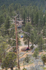 "bryce_212 • <a style=""font-size:0.8em;"" href=""http://www.flickr.com/photos/67316464@N08/8836134691/"" target=""_blank"">View on Flickr</a>"