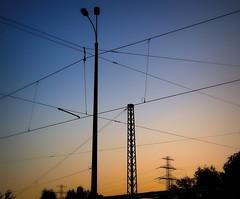 Am frhen Morgen (celavie54) Tags: licht mast morgen baum kabel morgenrte