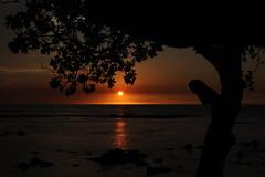 12-IMG_1451 (Symbiosis) Tags: sunset