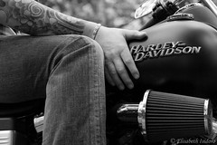 Stanislas 02 (Velvet.R) Tags: canon eos harley 7d davidson foret bikers stanislas 1770mm carnelle