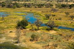 okavango delta from the air (neilfif11) Tags: africa air botswana okavango nikond800 nikon7020028afsvrlens
