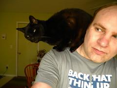 Outtake (bfaling) Tags: cat chat noir negro kitty parrot smug perched katze shoulder schwartz gatto minou