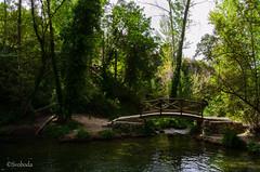 Mol de l'Ombra. (J. E. Svoboda) Tags: paisaje lagos alicante senderismo rios banyeres moldelombria