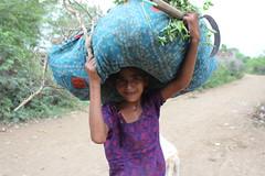Girl working, Rajasthan Oct 2013