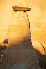 Darkness Climbing (Jared Ropelato) Tags: park autumn wild jared southwest west art fall valleyoffire nature beauty landscape photography desert pacific outdoor south conservation environmental canyon photograph toad page pacificnorthwest environment sw hoodoo zion wilderness slot stools toadstools enviro pnc conserve antelop 2013 ropelato jaredropelato ropelatophotography