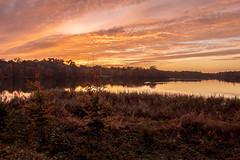 ltr-5889 Sunset Virginia Water (KazzT2012) Tags: sunset water canon eos berkshire virginiawater windsorpark 500d