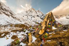 Prayer Flags (Craig Holloway) Tags: nepal sunset cloud snow mountains trekking trek landscape nikon prayerflags annapurna himalayas d800 annapurnasouth hiunchuli annapurnasanctuary zeiss21mm distagon2128zf