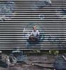 "52/52 ""the boy in the bubble"" (Tasha T. Faye) Tags: friends inspiration fun happy levitation bubbles portraiture conceptual 52weeksproject levitationphotography nikond3100 joelrobison tashafaye"