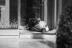 Homeless (Sento MM) Tags: retrato homeless alicante robado