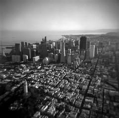 all of the above (Super G) Tags: sanfrancisco california above city blackandwhite bw film buildings holga air financialdistrict coittower northbeach aerialphotography selfdeveloped holga120n d761110min filmforfriday 1955dehavillandbeaverseaplane