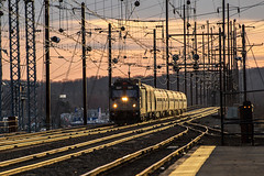 Amtrak Train 80, The Carolinian (MIDEXJET (Thank you for over 2 million views!)) Tags: unitedstatesofamerica maryland amtrak nec northeastcorridor perryville aem7 perryvillemaryland amtk921 train80