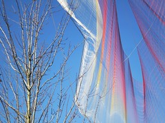 Unnumbered branches and sparks (Ruth and Dave) Tags: sky sculpture tree art net vancouver rainbow colours waterfront floating canadaplace vancouverconventioncentre ted2014 skiespaintedwithunnumberedsparks janetechelmann