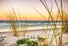 viewpoint wave (Nicolas Reggiani) Tags: ocean mer seascape france landscape sand dune sable paysage bassindarcachon aquitaine gironde latestedebuch lasalie