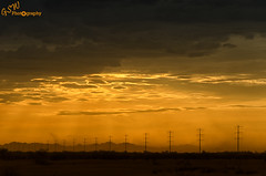 Dusty Arizona Sky (Gavmonster) Tags: nikon nikond7000 d7000 gswphotography landscape clouds sky land weather extremesky arizona usa unitedstates duststorm eerie light haboob leadingline telegraphpoles orange weatherfront atmospheric stormchaser stormchasing extremeweather