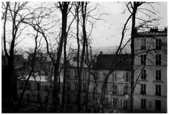 Shadow plays I (madras91) Tags: nb bw blackandwhite noiretblanc monochrome paris montmartre france leica leicam2 summaron summaron35mmf28