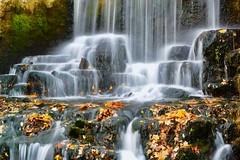 Upper Mill Falls at Old Mill, Ancaster, Hamilton, Canada (leo_li's Photography) Tags: uppermillfalls millfalls oldmill chute 落葉 fall autumn 秋天 加拿大 瀑布 waterfalls ancaster canada hamilton ontario