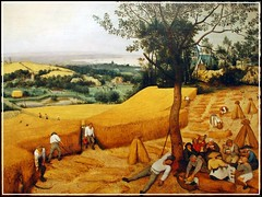 Pieter Bruegel the Elder - Metropolitan Museum of Art (singhsardar) Tags: metropolitanmuseumofart met metmuseum newyork new york ny painting oilpainting oil pietr bruegel manhattan famouspainting theharvesters pieter pieterbruegel pieterbruegeltheelder