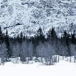 Winter | Khibiny Mountains, Russia thumbnail
