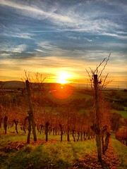 Sonnenuntergang über Kleinheppach #weinberg (andreasgang1) Tags: weinberg