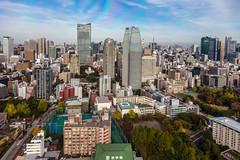 IMG_2603 (Evgeny Gorodetskiy) Tags: autumn travel birdseye city cityscape skyscrapper overlook japan tokyo minatoku tōkyōto япония jp