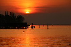 Evening Mood at Lake Constance (yarin.asanth) Tags: austria orange lake reserve nature water yarinasanth gerdmichaelkozik bodensee lakeconstance sundown sunset bregenz