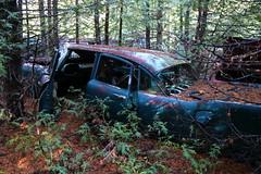 IMG_2756 (Irina Souiki) Tags: rusty crusty cars mcleansautowreckers milton ontario old oldcars