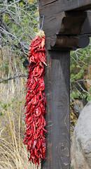 New Mexico Recor -- Red Chile Ristra;   Albuquerque, NM, BioPark Zoo [Lou Feltz] (deserttoad) Tags: newmexico plant color food chile ristra history