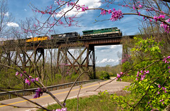 Right at Home (Carlos Ferran) Tags: ns norfolk southern heritage unit train trains locomotive ge 8099 serves south kentucky ludlow cnotp mainline bridge trestle 116 freight railroad rail road es44ac green spring flowers
