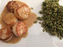 Seared scallops with lemon and vodka; kale pesto farro (htomren) Tags: phonepics food scallops