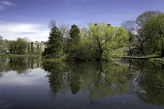 Harlem Meer (Joe Josephs: 3,122,834 views - thank you) Tags: nyc newyorkcity travel travelphotography joejosephs outdoorphotography â©joejosephs2017 ©joejosephs2017 harlem harlemmeer landscapephotography landscapes urbanparks urbanlandscapes