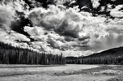Athabaska River (martincarlisle) Tags: athabaskariver jaspernationalpark alberta canada jasper mountedithcavell clouds sky rivers rocks trees blackandwhite monochrome canonxsi450d tamronlenses captureonepro9 niksoftware silverefexii nwn nationalparks canadianparks mountainparks parks